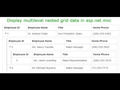 Display multilevel nested grid data in asp net mvc | DotNet