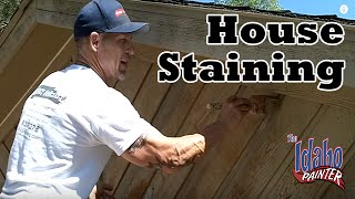 How Stain Cedar House Siding Diy How Stain House Exterior House Painting Tips