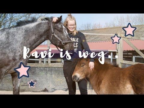 RAVI is WEG & ik heb 1 KONIJN | vlog #52 | Coco & Elise