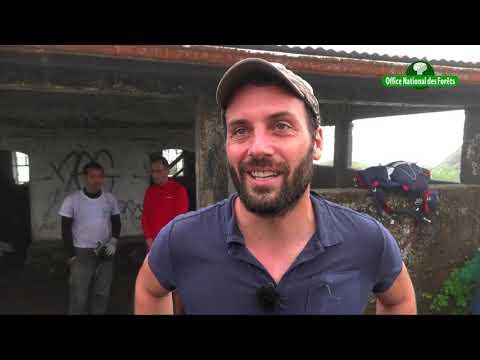 Montagne Pelée : plus de 300 martiniquais mobilisés pour réhabiliter un refuge