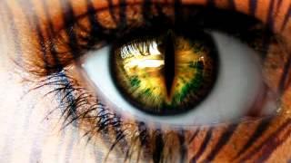 Survivor - Eye Of The Tiger (DOWNLOAD LINK!)