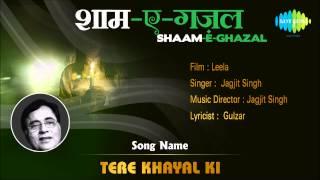 Tere Khayal Ki | Shaam-E-Ghazal | Leela | Jagjit Singh