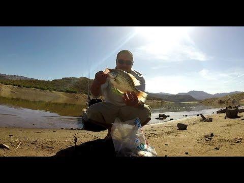 Bartlett Lake, AZ G&F Crappie Fishing - YouTube