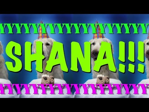 happy-birthday-shana!---epic-happy-birthday-song