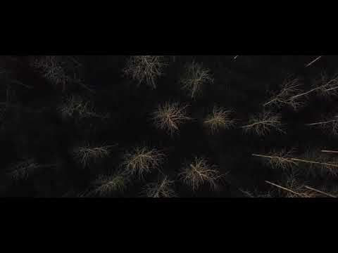 Yann Tiersen - Koad