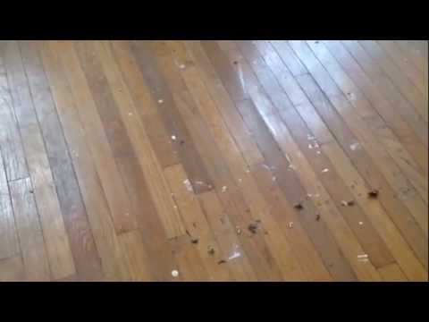 How to refinish your hardwood floors without sanding