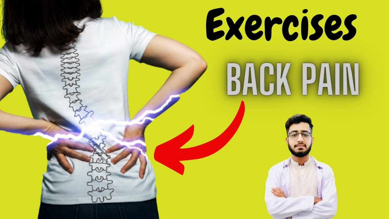 Back Pain Exercises For Lower Back Relief In Hindi/ Urdu Physio Mentor