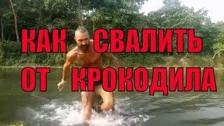 Нападение КРОКОДИЛА! Купание в ТРОПИЧЕСКОЙ реке ШАНСЫ человека