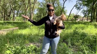Take a Hike with Princess in Marian R. Byrnes Natural Area