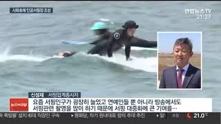 시화 MTV 거북섬 뉴스
