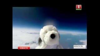 Игрушечная собака улетела в настоящий космос