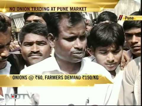 Pune: Onion trade halted over ban on exports