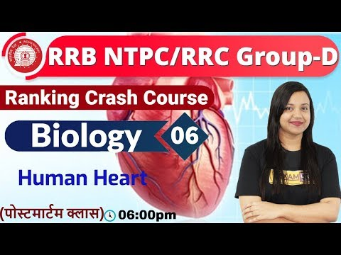 Class-06|RRB NTPC/RRC Group-D|| Ranking Crash Course ||Science| By Amrita Maam||Human Heart