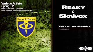 Reaky & Skaivox - Collective Insanity (Original Mix)