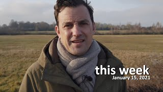 This Week: Episode 2 - January 15 2021