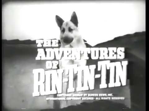 Meet Rin Tin Tin S1, Ep1 The Adventures of Rin Tin Tin