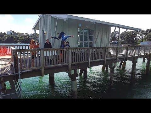 Wharf Jumping Auckland Devonport