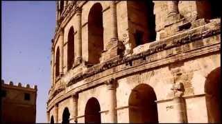 Apus pallidus ::: Tunisia, El Djem ::: 2014.06.08.