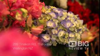 Flowers Rediscovered Florist Shop in Wellington NZ offering Bouquet and Floral Design