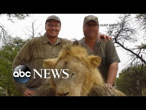 American Dentist Walter Palmer's Past Hunting Troubles