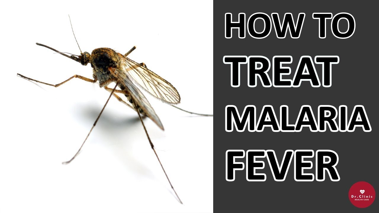 pictures How to Treat Malaria
