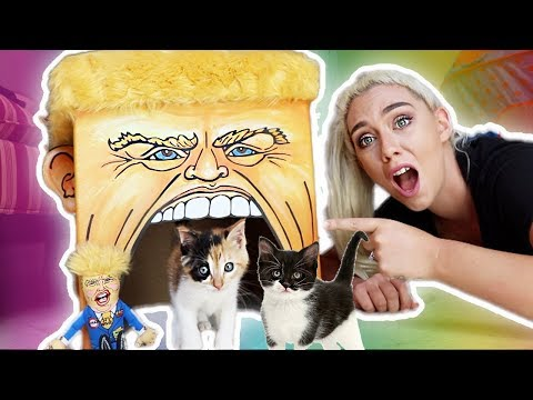 TESTING WEIRD CAT PRODUCTS ON MY KITTENS!
