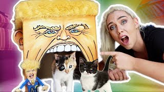 TESTING WEIRD CAT PRODUCTS ON MY KITTENS! | NICOLE SKYES