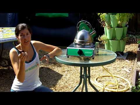 Cooking with Home BioGas