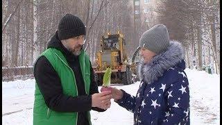 видео Дарим цветы не только на праздники