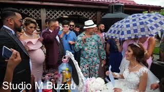 Sorinel Pustiu - Nunta Anului la Dan Salam