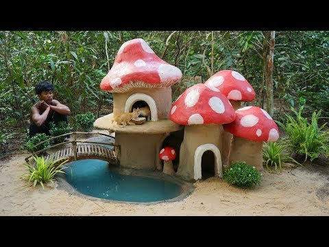 Collect Abandoned Kittens and Building Mushroom Mud Cat House with Swimming Pool