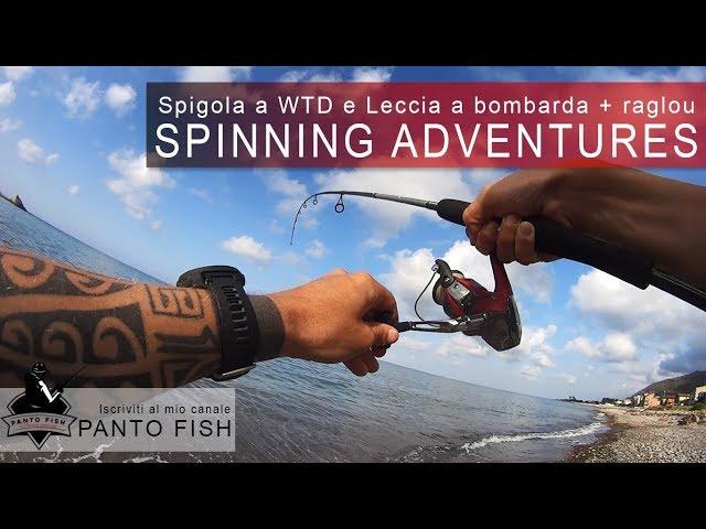 Spinning Adventures - Spigola a WTD e Leccia a bombarda e Raglou