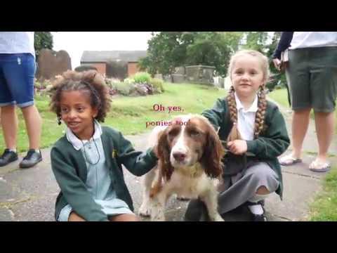 Holy Trinity Eccleshall Pet Service