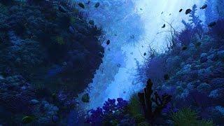Странное дело - Черная глубина