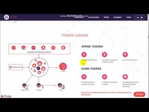 DOMRAIDER ICO REVIEW   DECENTRALIZED BLOCKCHAIN AUCTIONS IN REAL TIME