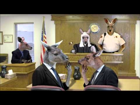 sovereign freeman in court bench Trial - Full Audio -
