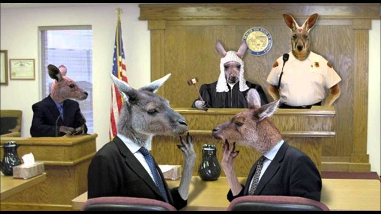 sovereign freeman in court bench trial full audio