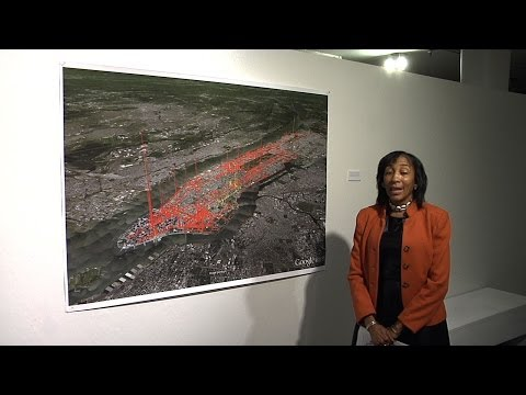 Samara Swanston: A Talk On Renewable Energy in NYC