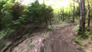 Squabble Creek loop 2 part 2