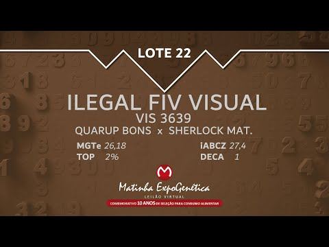 LOTE 22 MATINHA EXPOGENÉTICA 2021