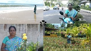 Plants Shopping Haul and Tour|Budget Terrace garden ideas|Amma samayal