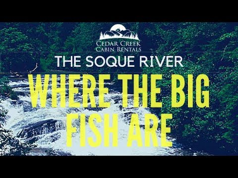 Fly-Fishing The Soque River