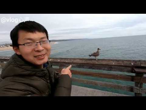 【vlog心声】beautiful beach in the United States