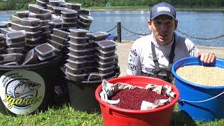 МЕГА-массовый закорм 450 пачек червя 11 литров опарыша и 11 кг мотыля за рыбалку Огромные ЛЕЩИ