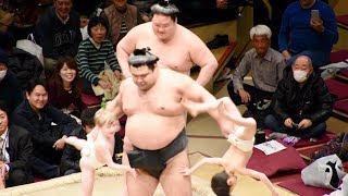 2018.02.11日本大相撲トーナメント第四十二回大会⑧ちびっこ相撲(高安&...