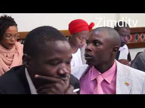 """Another GNU in 2018"" says  Ibbo Mandaza"