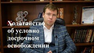 видео Условно досрочное освобождение от отбывания наказания 2018