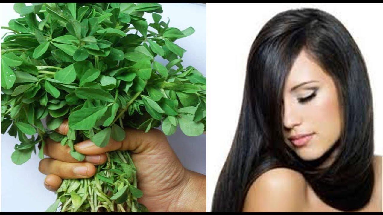 Image result for मेथी की पत्तियों फेस पैक