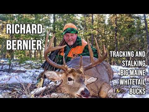 249 RICHARD BERNIER - Tracking and Stalking Big Maine Whitetail Bucks