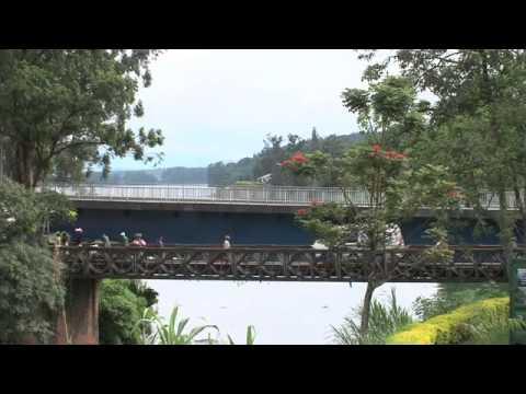 Rwanda Congo Burundi, Interets communs